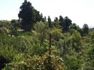 Дома, котеджи, дачи в Цихисдзири, Аджария, Грузия. Природный родник. Фото 15