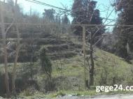 Купить участок в Махинджаури, Грузия. Фото 1