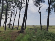 Земельный участок у Черного моря в Уреки. Участок на берегу реки в Уреки, Грузия. Фото 6