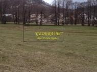 Участок в центре Бакуриани. Купить земельный участок на горнолыжном курорте Бакуриани, Грузия. Фото 6