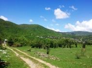 Земельный участок в курортном районе Грузии, Жинвали. Фото 2