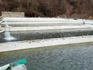 Рыбоводное хозяйство. Продается действующий сельскохозяйственный комплекс.  Фото 5