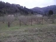 Земельный участок в Гонио, Грузия. Фото 3