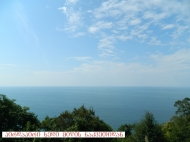 Участок у моря в Гонио, Батуми, Аджария. Купить участок с видом на море в Гонио,Грузия. Фото 1