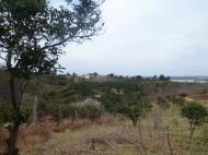 Земельный участок в Батуми с видом на море. Фото 6