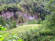 Продается земельный участок в живописном месте. Аджария, Грузия. Фото 1