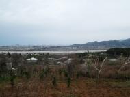 Участок в Ахалсопели, Аджария. Участок с видом на море и город в Ахалсопели, Аджария, Грузия. Фото 2