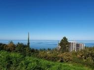 Участок в Махинджаури с видом на море и город Батуми,Грузия. Фото 1