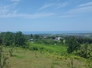 Участок с видом на море и горы в Ахалсопели. Участок в пригороде Батуми, Грузия. Фото 5
