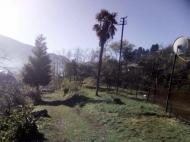 Частный дом в пригороде Батуми. Частный дом с земельным участком в пригороде Батуми, Грузия. Фото 9