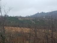 Участок с видом на горы в Озургети, Грузия. Купить земельный участок с видом на горы в Озургети, Грузия. Фото 1