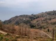 Участок с видом на море в Сарпи, Грузия. Фото 1