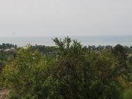 Дом в Чакви. Купить частный дом с видом на море и горы в Чакви, Грузия. Фото 28