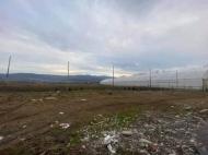 Продается частный дом с земельным участком в Сурами, Грузия. Теплица. Действующий бизнес. Фото 5