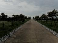 Продажа квартир в Батуми. Готовый дом, первая линия, 35м2 - 74м2, 600$/м2 Фото 6