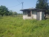 Земельный участок в Батуми. Грузия. Фото 5