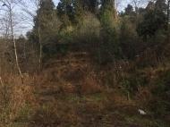 Продается земельный участок в Уреки, Грузия.  Фото 2