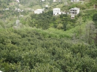 Дом с участком в Батуми,Грузия. Купить дом с земельным участком в Батуми,Грузия. Фото 17