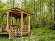 Частный дом для отдыха на озере Палеостоми. Купить дом с участком у озера Палеостоми, Грузия. Фото 16