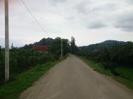 Купить земельный участок в пригороде Батуми,Хелвачаури,Грузия. Фото 1