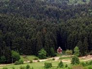 Продается земельный участок в живописном месте. Продается земельный участок в курортном районе Рача-Лечхуми, Грузия. Фото 4