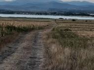 Продается земельный участок у озера Базалети, Грузия. Фото 4