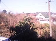 Дом в Батуми с участком и мандариновым садом Фото 1