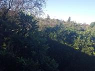 იყიდება კერძო სახლი მანდარინის ბაღით ახალ ბულვარში. ბათუმი. საქართველო. ფოტო 2