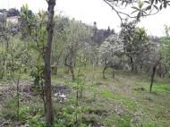 Продажа земли на Зеленом мысе Аджария Грузия Фото 7