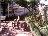 Продается дом в Батуми с баней и бассейном. Купить дом в Батуми. Фото 36