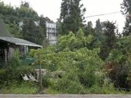 Квартира с ремонтом на Зеленом мысе. Аджария, Грузия. Фото 16