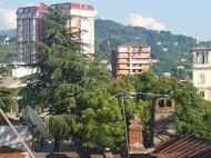 Квартира с видом на горы и на город Батуми, Грузия. Фото 8