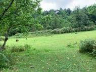 Земельный участок на продажу в курортной зоне Кобулети, Грузия. Фото 5