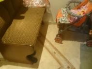 Аренда квартиры посуточно. Современный ремонт. В центре Батуми. Аджария,Грузия. Фото 3