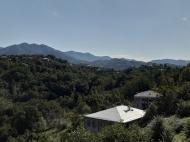 Купить частный дом в курортном районе Кобулети, Грузия. Мандариновый сад, Фруктовый сад. Фото 9