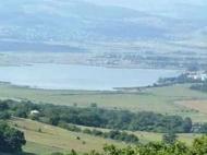 Продается земельный участок у озера Базалети, Грузия. Фото 3