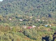 Срочно продается частный дом в Кобулети, Грузия. Фото 25