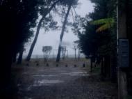 Земельный участок у моря в Батуми,Грузия. Фото 1