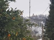 Земельный участок для дачи в Капрешуми. Земельные участки в Капрешуми, Аджария, Грузия. Фото 4