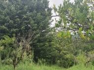 в окрестностях Кобулети продается двухэтажный частный дом с земельным участком. Фото 12