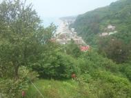 Дом с участком и фруктовым садом в Квариати, Грузия. Вид на море и горы. Фото 1