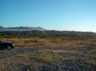 Земельный участок на пляже Черного моря в Кобулети. Участок на пляже Черного моря в Кобулети, Грузия. Фото 3