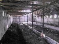Земельный участок сельхозназначения в Ланчхути,Грузия. Фото 1