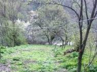 Земельный участок в курортном районе Грузии. Фото 1