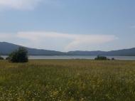 Продается земельный участок недалеко от озера Шаори Инвестиционная Рача. Грузия. Фото 1