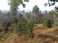 продается земельный участок с прекрасным видом Фото 1