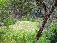 Продается земельный участок в живописном месте. Аджария, Грузия. Фото 3