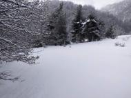 Земельный участок в курортном районе Грузии Фото 22