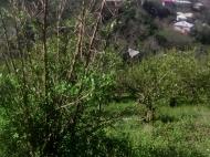 იყიდება მიწის ნაკვეთი ზღვის და ქალაქის ხედით. ბათუმი. საქართველო. ფოტო 8