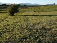 Продается земельный участок у озера Базалети, Грузия. Фото 5